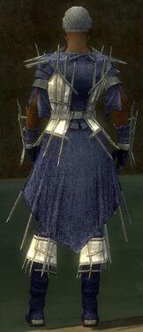 Elementalist Primeval Armor M dyed back