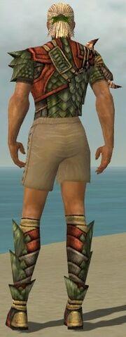File:Ranger Elite Drakescale Armor M gray chest feet back.jpg