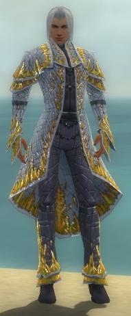 File:Elementalist Elite Iceforged Armor M dyed front.jpg