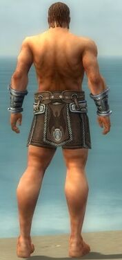 Warrior Gladiator Armor M gray arms legs back