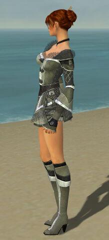 File:Elementalist Kurzick Armor F gray side.jpg