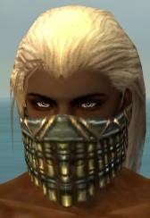 File:Ranger Elite Luxon Armor M gray head front.jpg