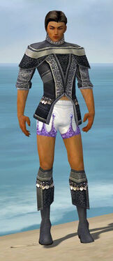 Elementalist Luxon Armor M gray chest feet front