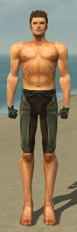 File:Mesmer Istani Armor M gray arms legs front.jpg