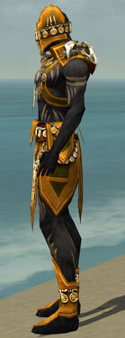 Ritualist Elite Kurzick Armor M dyed side