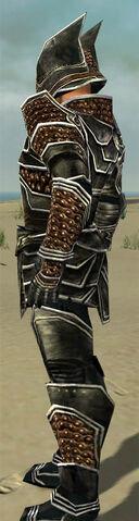 File:Warrior Kurzick Armor M dyed side.jpg