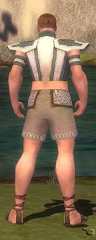 File:Monk Elite Saintly Armor M gray chest feet back.jpg