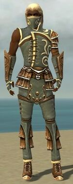 Ranger Shing Jea Armor M gray front