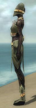Ritualist Elite Kurzick Armor F gray side