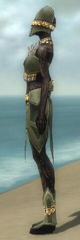 File:Ritualist Elite Kurzick Armor F gray side.jpg