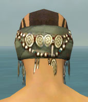File:Ritualist Canthan Armor M gray head back.jpg