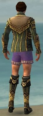 Mesmer Asuran Armor M gray chest feet back