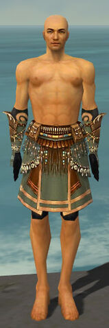 File:Ritualist Imperial Armor M gray arms legs front.jpg