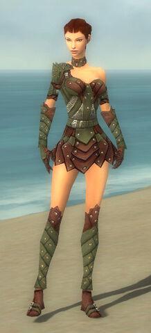 File:Ranger Elite Studded Leather Armor F gray front.jpg