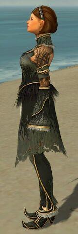 File:Mesmer Primeval Armor F gray side.jpg