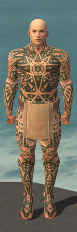 File:Monk Star Armor M gray front.jpg