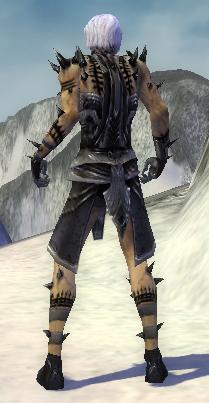 File:Necromancer Obsidian Armor M gray back.jpg