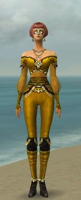 File:Mesmer Luxon Armor F dyed front.jpg