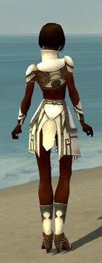 Paragon Asuran Armor F gray back
