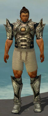 Warrior Elite Sunspear Armor M gray chest feet front