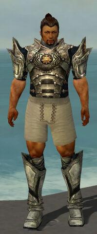 File:Warrior Elite Sunspear Armor M gray chest feet front.jpg