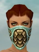 File:Ranger Elite Canthan Armor F dyed head front.jpg