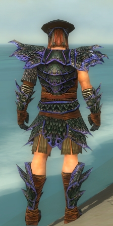 File:Warrior Luxon Armor M dyed back.jpg
