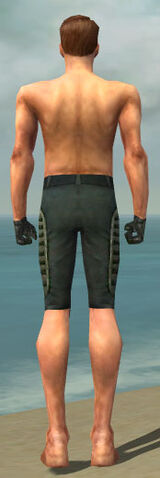 File:Mesmer Rogue Armor M gray arms legs back.jpg
