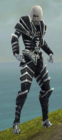 File:Necromancer Elite Cultist Armor M dyed front.jpg