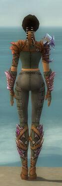 Ranger Drakescale Armor F gray back
