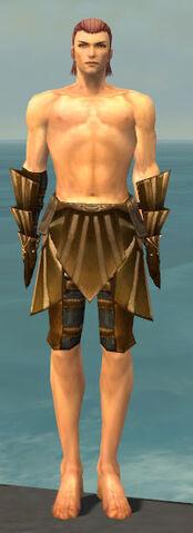 File:Ranger Sunspear Armor M gray arms legs front.jpg
