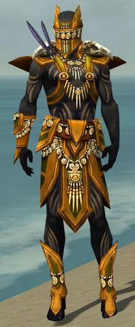 File:Ritualist Elite Kurzick Armor M dyed front.jpg