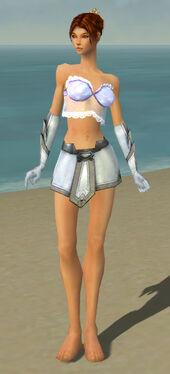 Elementalist Ascalon Armor F gray arms legs front
