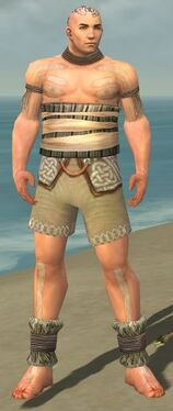 Monk Istani Armor M gray chest feet front