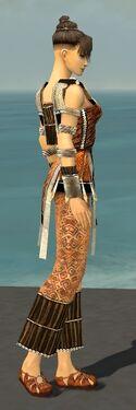 Monk Elite Sunspear Armor F dyed side