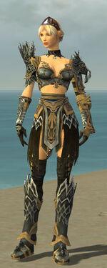 Warrior Silver Eagle Armor F nohelmet