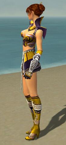 File:Elementalist Deldrimor Armor F dyed side.jpg