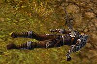 Fallen Vanguard Soldier
