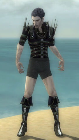 File:Necromancer Elite Cabal Armor M gray chest feet front.jpg