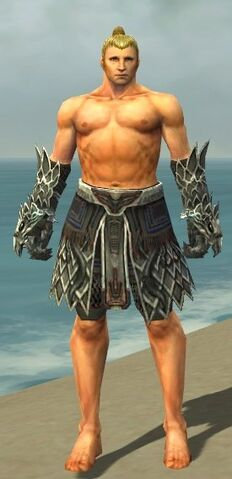 File:Warrior Silver Eagle Armor M gray arms legs front.jpg