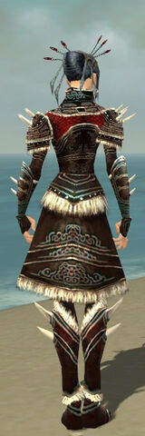 File:Necromancer Norn Armor F gray back.jpg