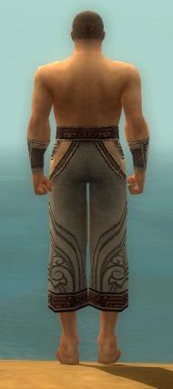 File:Monk Asuran Armor M gray arms legs back.jpg