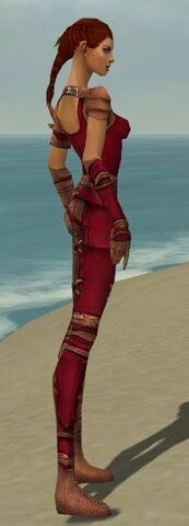 File:Ranger Ascalon Armor F dyed side.jpg