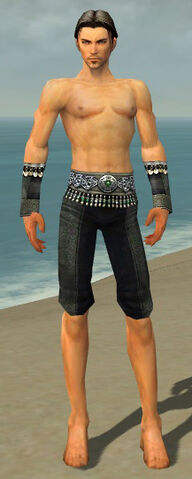 File:Elementalist Elite Luxon Armor M gray arms legs front.jpg