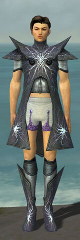 File:Elementalist Stormforged Armor M gray chest feet front.jpg