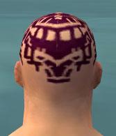 File:Monk Elite Sunspear Armor M dyed head back.jpg
