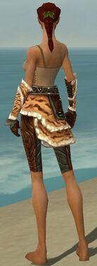 Ranger Vabbian Armor F gray arms legs back
