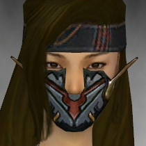 File:Assassin Elite Kurzick Armor F gray head front.jpg