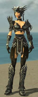 Warrior Silver Eagle Armor F gray front