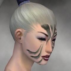 File:Necromancer Elite Luxon Armor F gray head right.jpg